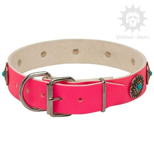 Pink Leather Staffy Collar