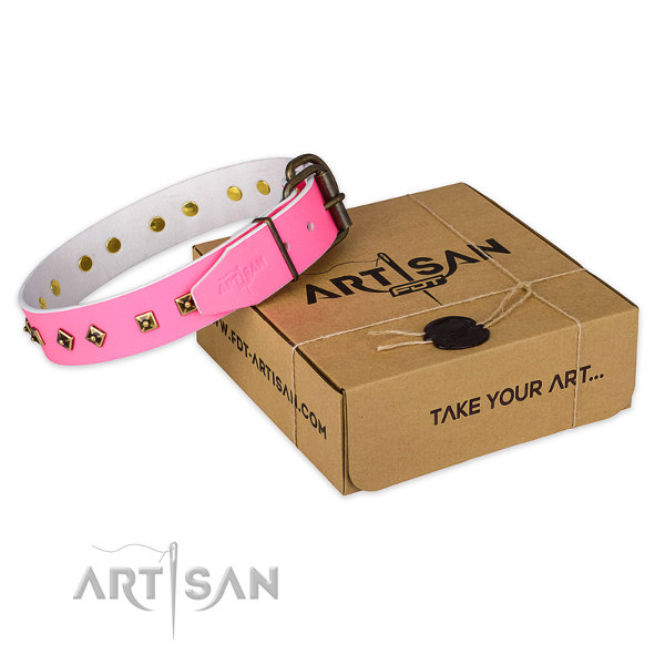 Pink Staffy Collar