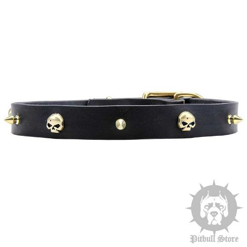 Leather Pirate Dog Collar