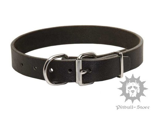 Pitbull Collars UK