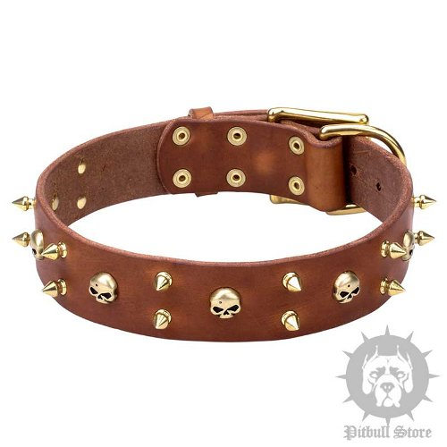 Hard Rock Dog Collar