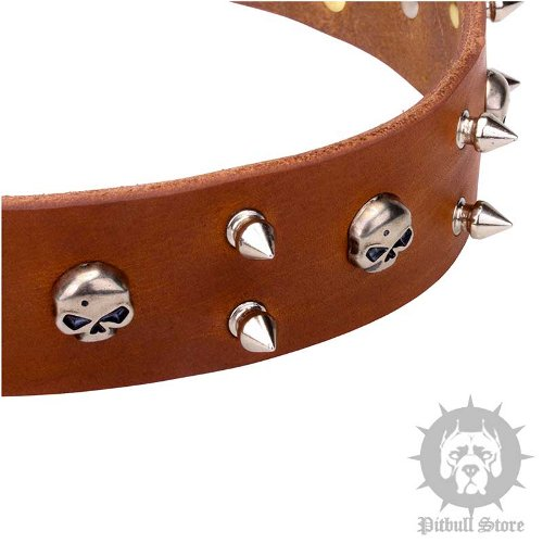 Leather Skull Dog Collar