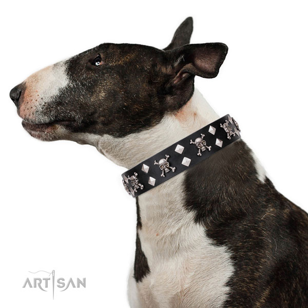 Wide Leather Dog Collars