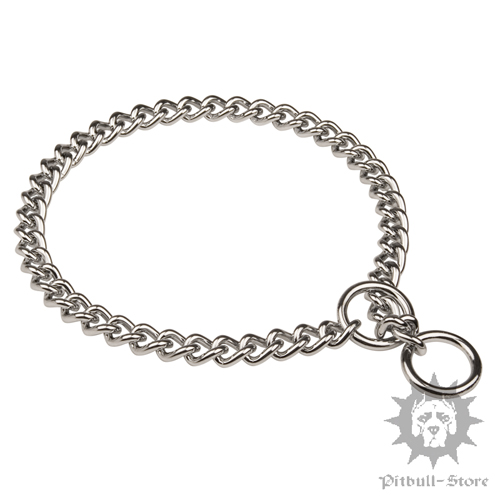 Pitbull Dog Chain Collar