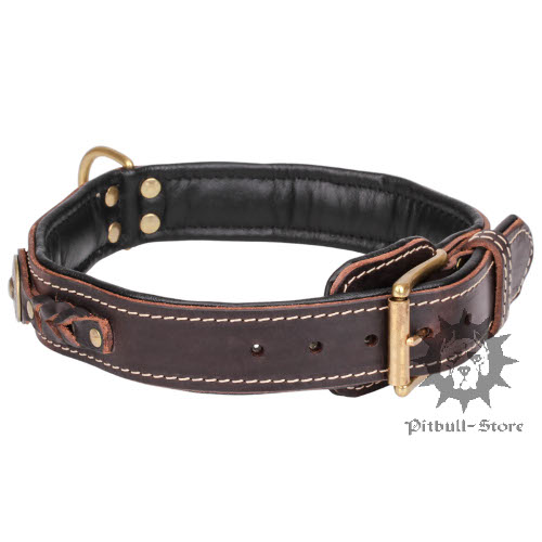 Padded Dog Collar
