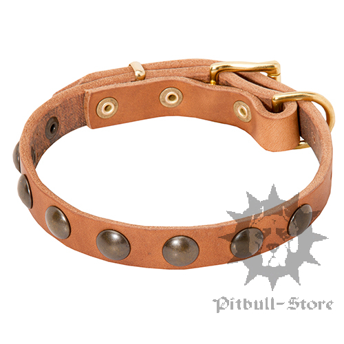 Puppy Leather Collar