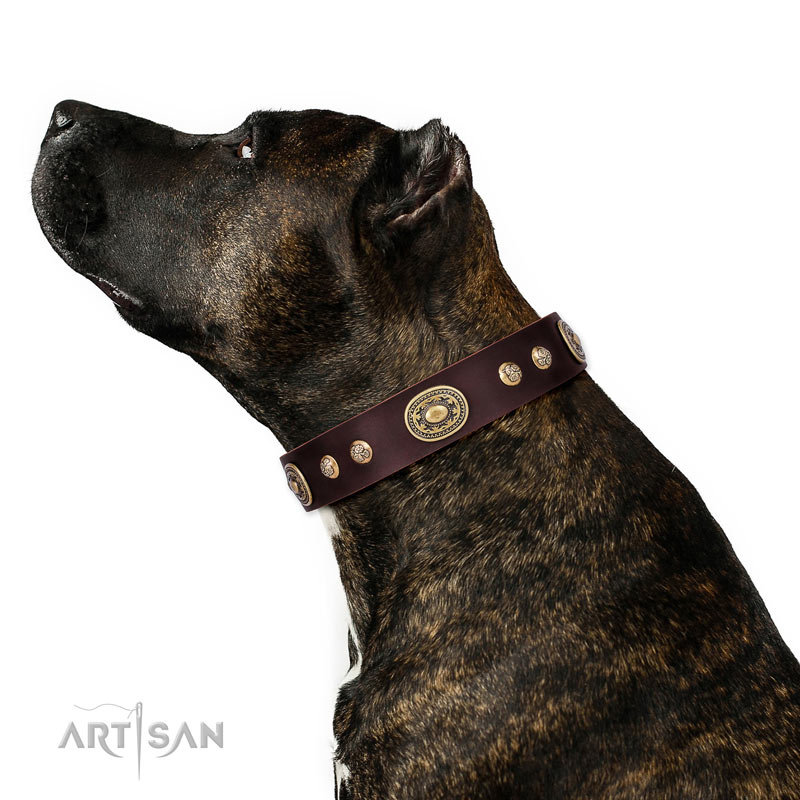 185a1d6d5b Staffordshire Leather Collar  Breath of Elegance  - £44.90