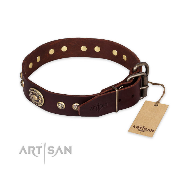 Staffordshire Leather Dog Collar