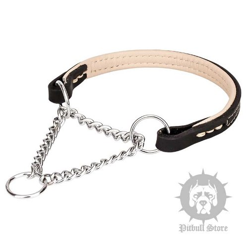 Staffy Dog Collars UK