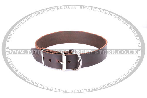 Staffy Leather Dog Collars UK