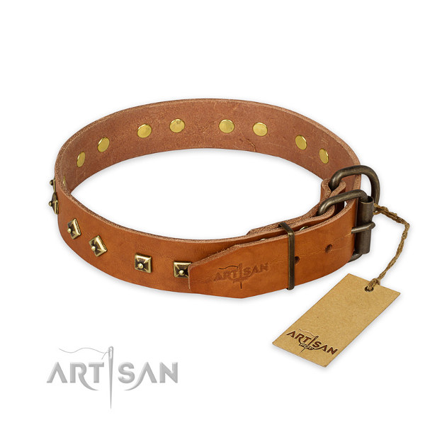 Staffy Studded Dog Collars