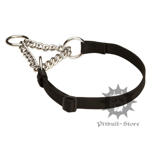 Nylon Martingale Dog Collar
