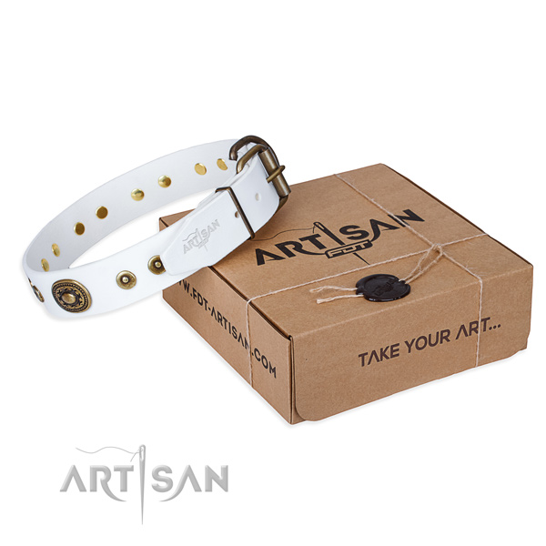 Stud Collar for Dogs