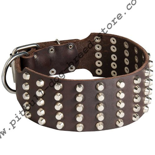 Wide  Dog Collars for Pit Bull