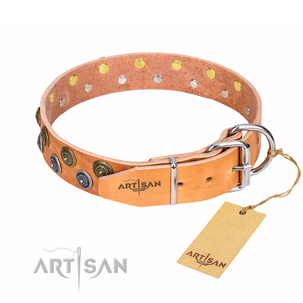 Studded Leather Dog Collars