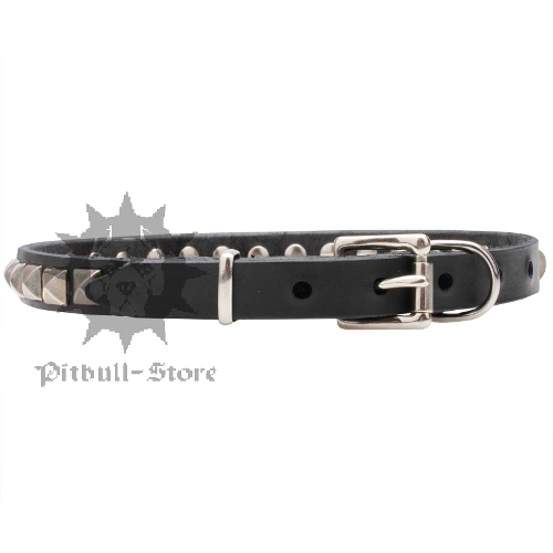 Thin Dog Collar