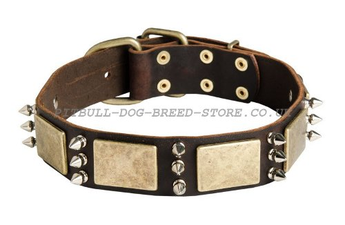 Ultimate Dog Collars UK