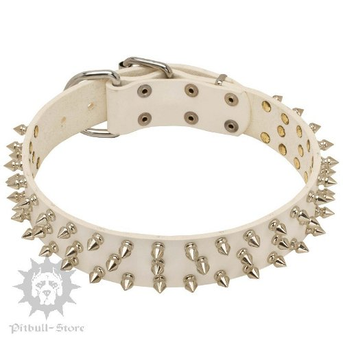 White Leather Spiked Dog Collar