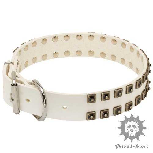 White Leather Studded Dog Collars