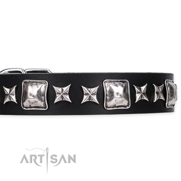 Wide Dog Collars for Large Breeds