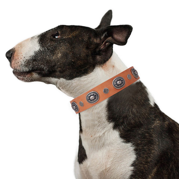 Wide Leather Dog Collars UK
