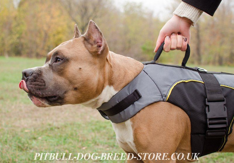 Dog Vest With Handle Dog Vest Harness With Handle
