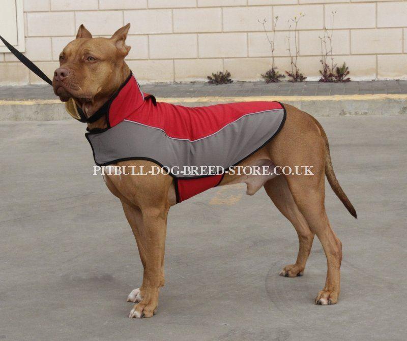 Funny Dog Coats Uk