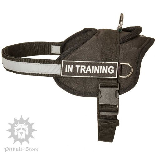 Cane Corso Training Harness