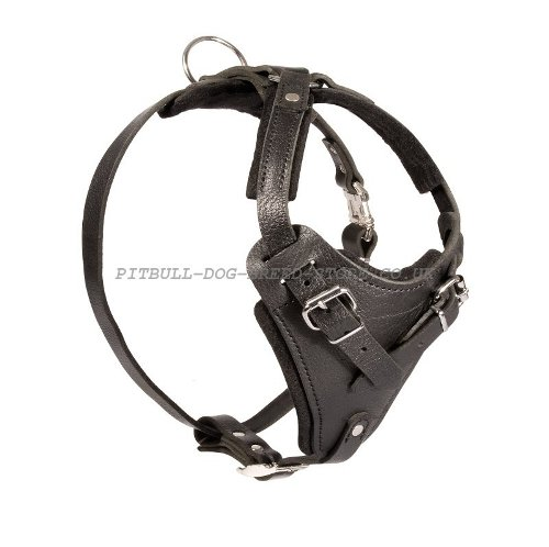 Protection Dog Harness