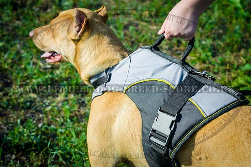 Dog Jacket Harness