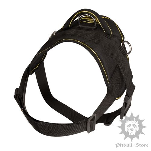 Best Dog Harness UK