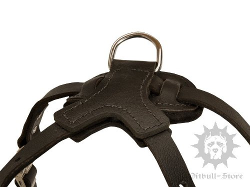 Leather Dog Harness for Staffy