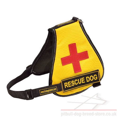 Service Dog Vest for Pitbull