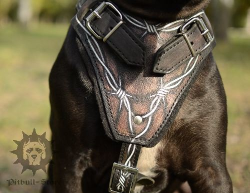 Leather Pitbull Harness