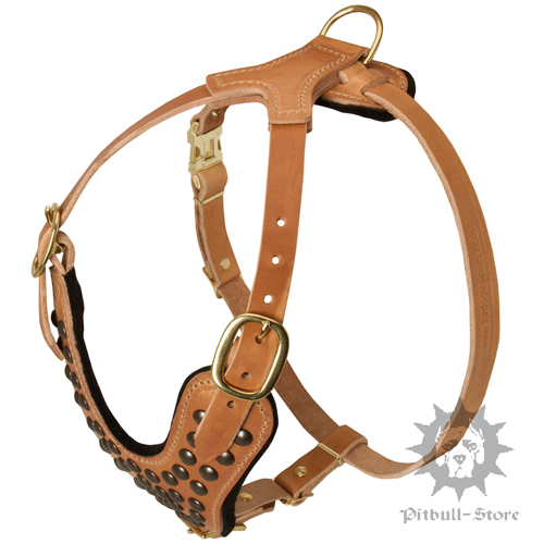 Studded Dog Harness in Tan