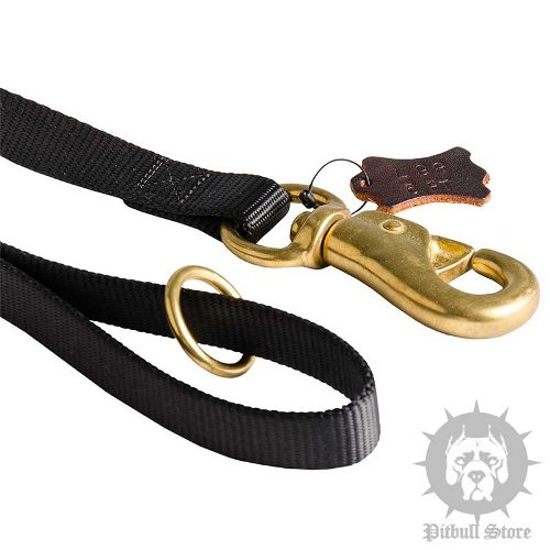 Best Pitbull Leash