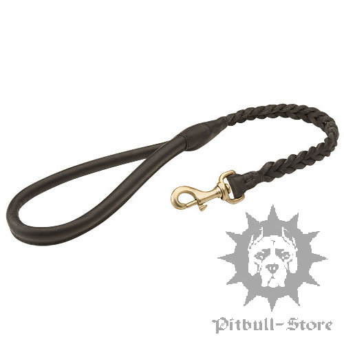 Designer Dog Lead