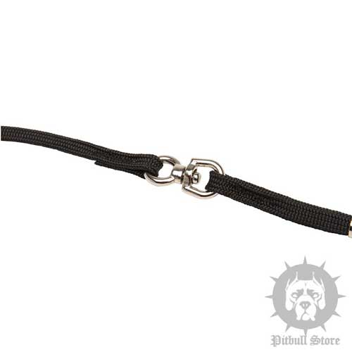 Dog Show Collar and Lead