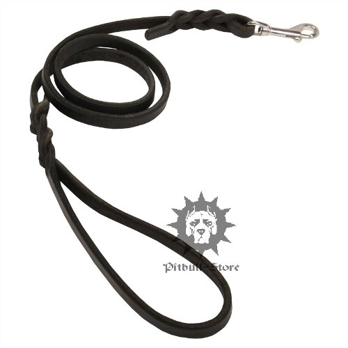 Pitbull Dog Leash