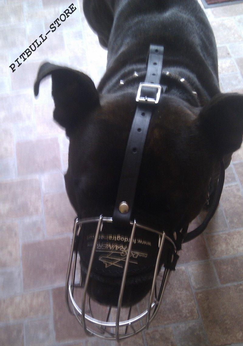 Basket Dog Muzzle for Pitbull   Wire Dog Muzzle ➽