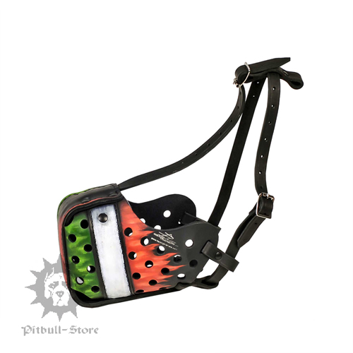 Painted Dog Muzzle