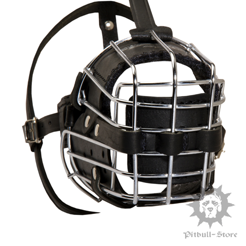 Staffy Wire Muzzle for Dogs