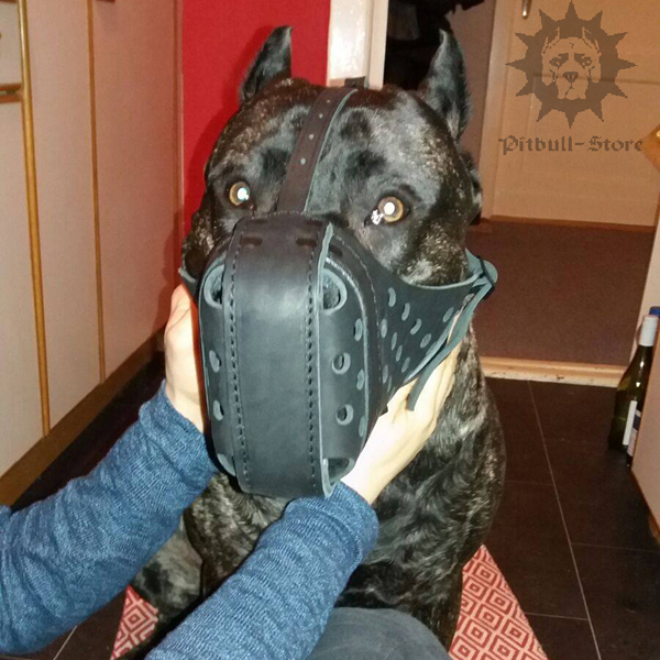 Heavy Duty Dog Muzzle