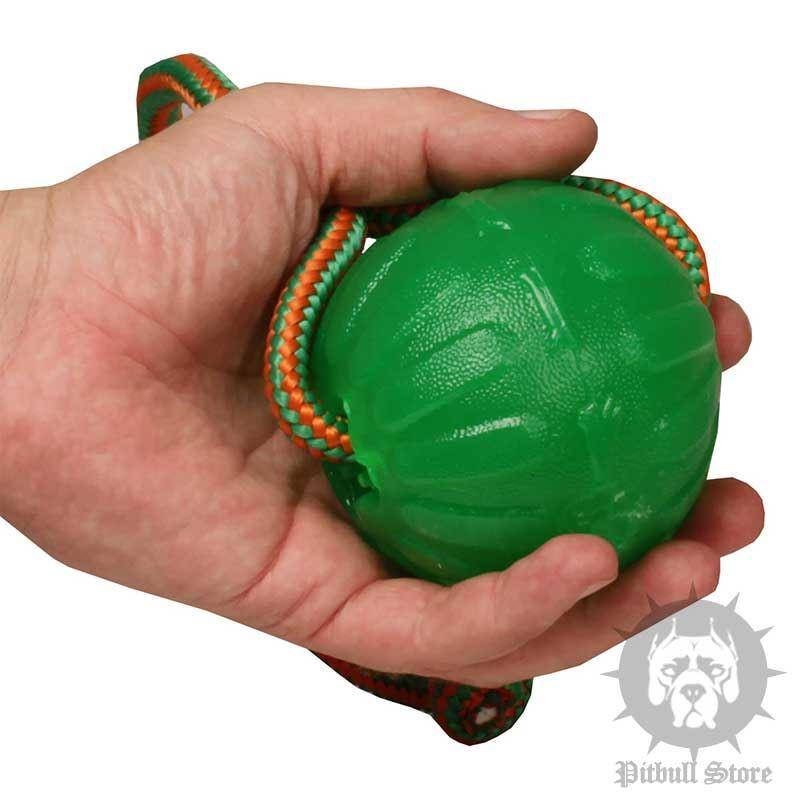 Best Indestructible Dog Toys Uk