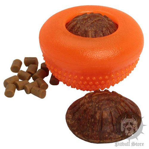 Round Toy With Treat In Middle Dog