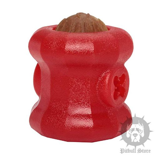 Dog Feeding Toy UK