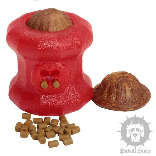 Dog Feeder Toy UK for Hard Chewers