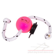 Dog Training Ball on Rope with Multi Power-Clip by Top-Matic