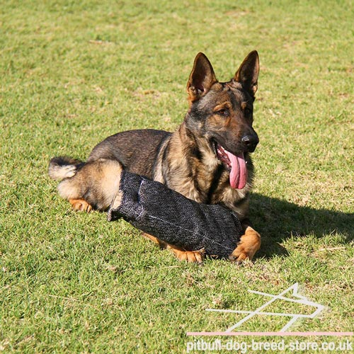 GSD Training Gear