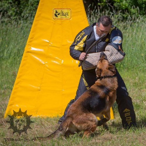 Buy Dog Training Suit